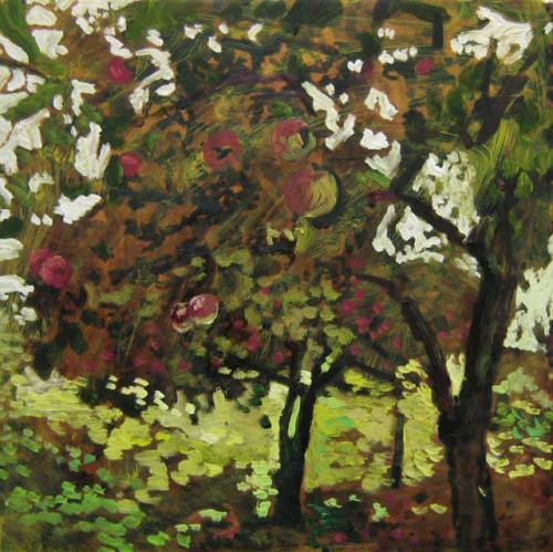 Valley Apple Trees 2014